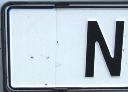 Norway normal series former style close-up of white sticker NF 11105.jpg (41 kB)