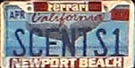 USA California personalized environmental plate close-up SCENTS1.jpg (11 kB)